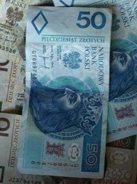 polish zloty falls